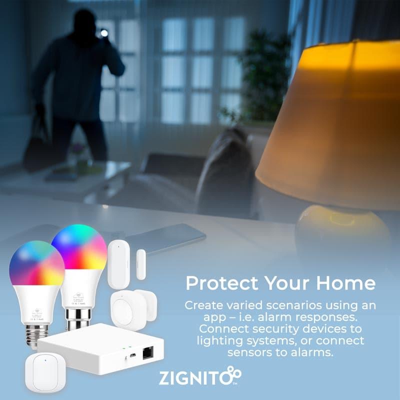 ZignitoScene ProtectYourHome web
